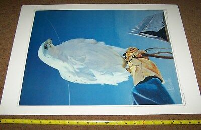 Air Force Art Collection Picture Poster *nice* #8