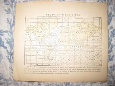 Antique 1858 Tidal Lines Handcolored World Map Asia United States Surfing Rare