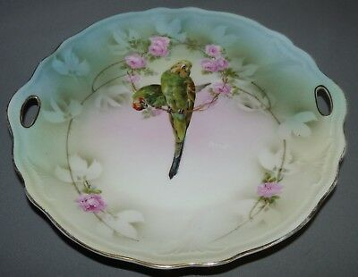 Germany Plate Parrots Birds Hand Painted Pink Flowers Tielsch  Silesia Antique