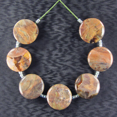 """Mexican Agate 7"""" Inch Bead Set ZZ015000"""