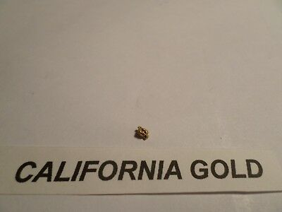 GOLD: CA Placer Nugget (River Mining) 0.080 Grams. Coloma, CA - American River.