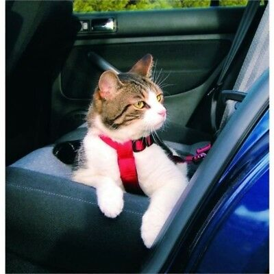 Harness And Belt Security Cats, 20–50cm, Red - Trixie Safety Cat Car Cats