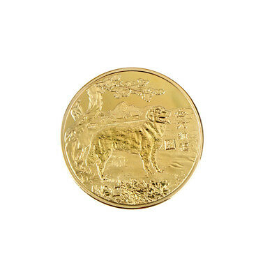 1Pc 2018 Year Of The Golden Dog Coin Chinese Travel Memorial Coins Pop