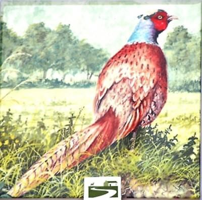 Pheasant  Decorative Heavy Glazed Wall Tile Shooting GIFT Tea Pot Stand