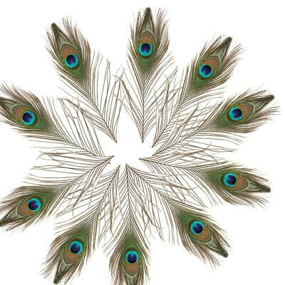 """New 100PACK 10""""-12"""" Beauty Real Natural Peacock Tail Eyes Feathers Decoration US"""