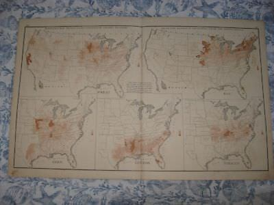 Antique 1874 United States Agriculture Map Tobacco Cotton Census Disease Texas