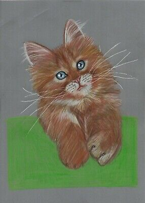 Hand drawn Adorable blue eyed ginger kitten artwork parchment craft picture