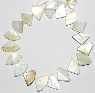 """MP1829 Natural White Triangle Fan 16mm Mother of Pearl Shell Bead 15"""""""