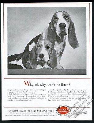 1957 Basset Hound photo Capital Stock insurance vintage print ad
