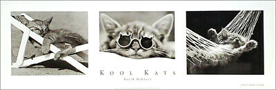 Rare KOOL KATS Cool Cats Black-and-White Animals Classic Poster Print