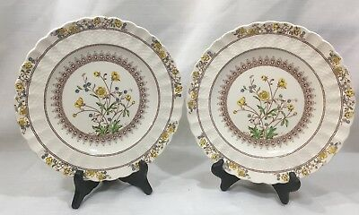 "Vintage SPODE BUTTERCUP COPELAND Luncheon 9"" Plates PAIR SET TWO 2 Earthenware"