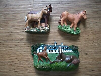 Kentucky Thoroughbred Mare Foal Horse Racing Magnet Lot Of 3