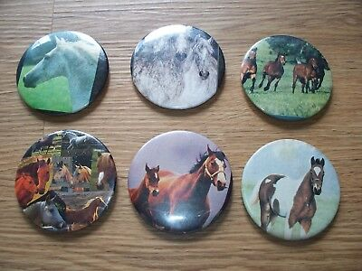 Thoroughbred Arabian Pinto Foal Horse Magnet Lot Of 6