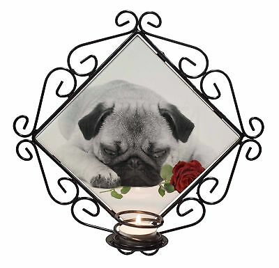 Pug (B+W Photo) with Red Rose Wrought Iron T-light Candle Holder Gif, AD-P92R2CH