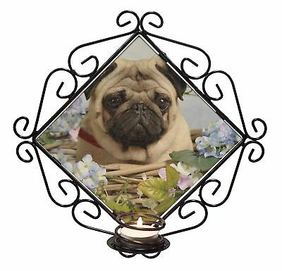 Fawn Pug Dog in a Basket Wrought Iron T-light Candle Holder Gift, AD-P96CH