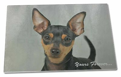 AD-MP1yJW Miniature Pinscher /'Yours Forever/' Girls//Ladies Denim Purse Wallet Ch