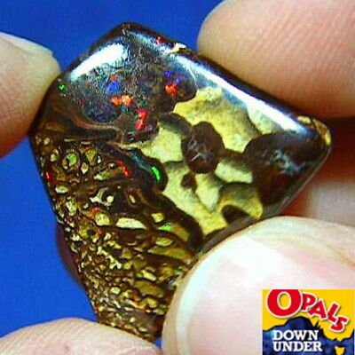 Flashy Reds * 18ct Natural Australian Solid Yowah Boulder Opal * See Video