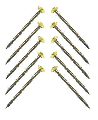 """10 x Picture Pins Traditional Picture Nails Brass Headed Nails 1"""" Picture Pins"""