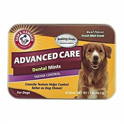 Arm & Hammer Advanced Care Tartar Control Dental Mints For Dogs In Beef Flavor,