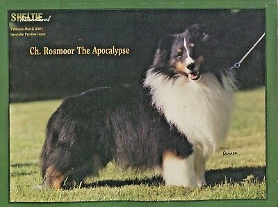 Sheltie International February March 2001 Shetland Sheepdog Dog Magazine
