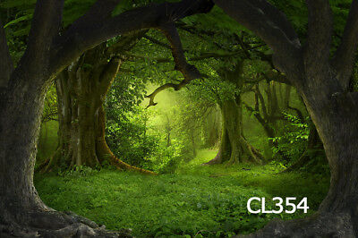 Fairy tale Thin Vinyl backdrop Photography Photo CP background Prop 3X3M DF114