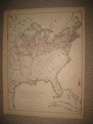 Antique 1874 United States Census Map Foreign Immigrant Texas Florida Illinois N