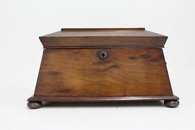 Antique 19th Century Victorian Rosewood 3-Section Sarcophagus Tea Caddy