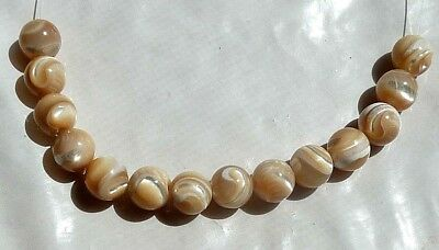 14 Gorgeous 8mm Natural Iridescent GOLDEN SEA SHELL Round Beads