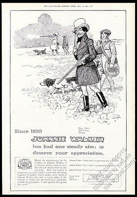 1910 Johnnie Walker Scotch Whisky hunting dog art BIG vintage print ad