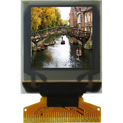 Midas Displays MCOT096096AY-RGBM OLED TAB Graphic Display 96x96 RGB