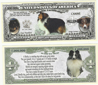 Dollar Shetland Sheepdog, Sheltie Dog Hund 1 Million Certificate