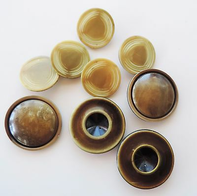 Celluloid Buttons Lot of 8 Coat Button Large Size Matching Sets Brown Beige VTG
