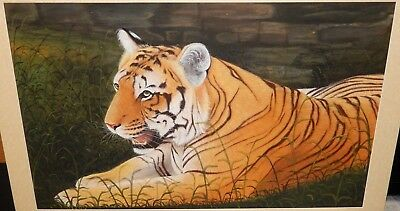 Huge Japanese Tigers In Grass Original Watercolor Silk Painting Unsignd