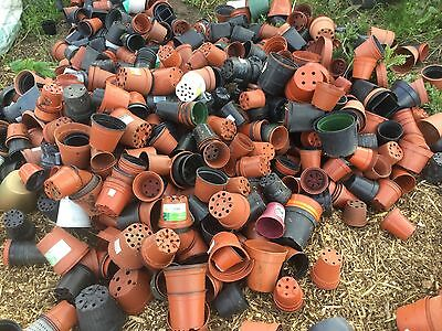 Large quantity of small & medium Plastic Plant Flower pots nr Brighton