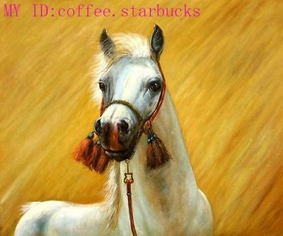 ZWPT413 modern animal white horse hand-painted wall art oil painting on canvas