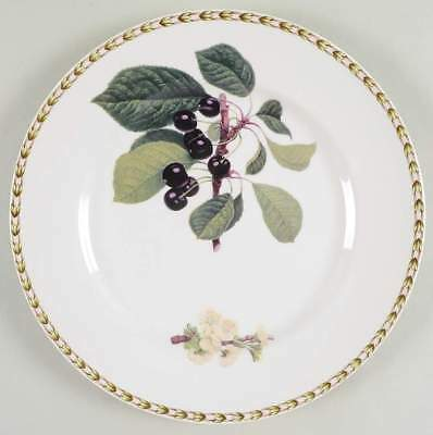 Rosina Queens HOOKER'S FRUIT (INDIA) Cherry Dinner Plate 5963233