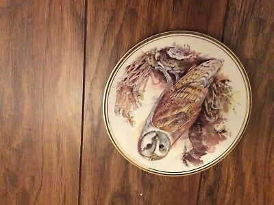 Royal Vale Bone China Plate Barn Owl