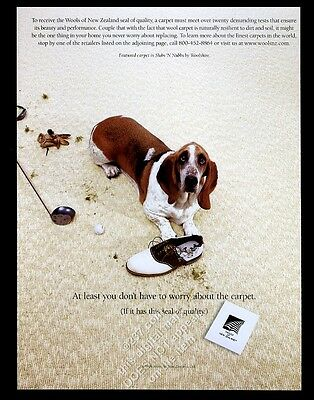 1999 Basset Hound photo New Zealand wool carpeting vintage print ad
