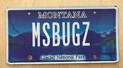 "Mt Colorful Glacier Nat'l Park  Vanity License Plate "" Ms Bug Z ""  Bugsie Vw Bug"