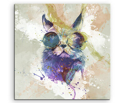 Cool Cat 60x60cm Aquarell Art Leinwandbild Old