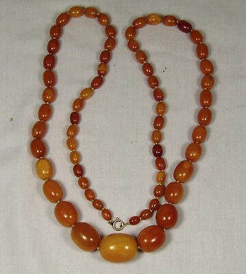 Fine Old Antique Natural Baltic Amber , Necklace, 70 Grams,butterscotch Egg Yolk
