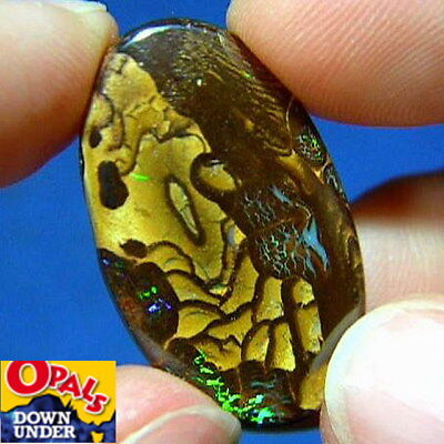 Flashes of Color * 19ct Natural Australian Solid Yowah Boulder Opal * See Video