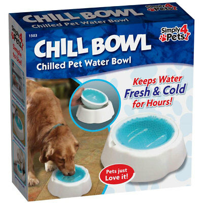 Water Cooling Drinking Bowl for Dogs Cats Pets Keeps Water Chilled Cold Fresh