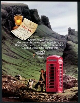 1989 Dewar's Scotch Whisky Border Collie red telephone box photo print ad