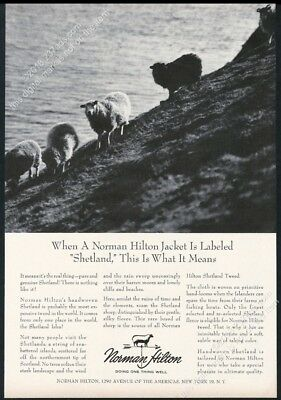1964 Shetland sheep photo Norman Hilton fashion vintage print ad