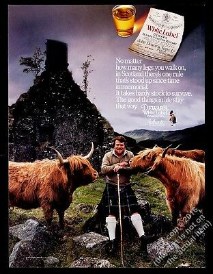 1987 highland cattle bull photo Dewar's Scotch Whisky vintage print ad
