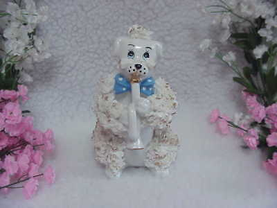 White Spaghetti Poodle Musician Playing A French Horn - Light Blue Polka Dot Bow