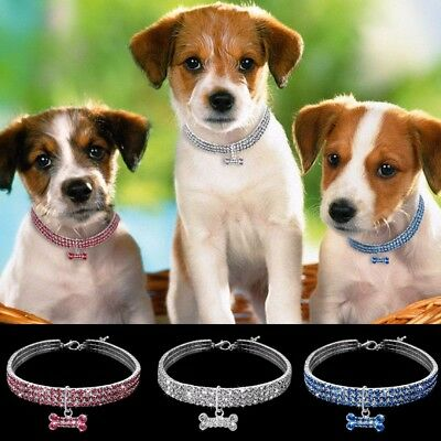 Bling Strass Chien Collier Collier Chiot Pet Chihuahua Diamante & Pendentif
