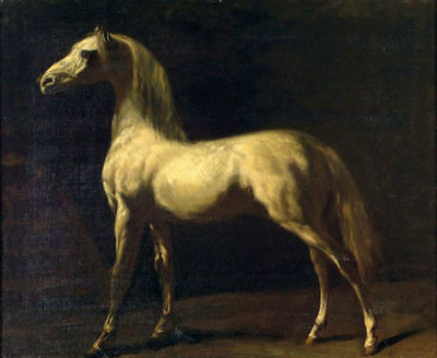 ZWPT261 100% hand-painted home wall art modern horse oil painting on canvas