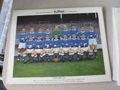 Ty-Phoo Everton Team card 1963